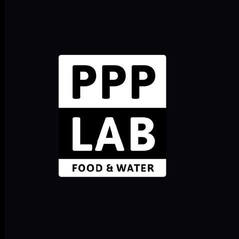 Huisstijl PPP Lab